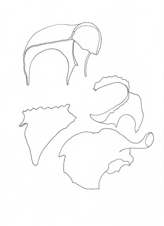 Fragments 5a' 2013 (ink pen on paper / 29.7×21 cm)