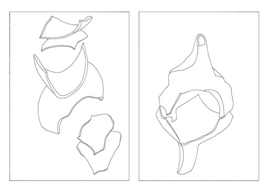'Fragments 3' 2013 (ink pen on paper, each 29.7x21 cm)